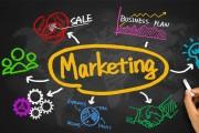 چگونه برای شرکت خود یک بازاریاب مناسب استخدام کنیم
