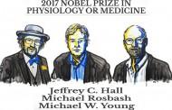 جایزه نوبل پزشکی سال ۲۰۱۷  به سه دانشمندان آمریکایی رسید